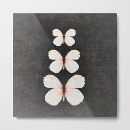 three pink butterflies Metal Print