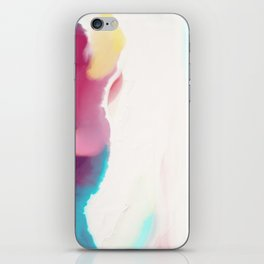 Coast from above iPhone Skin