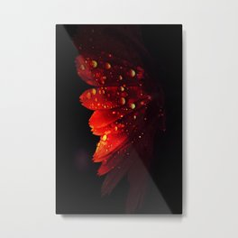 A flower becomes a wing Metal Print