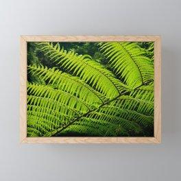 Fern Framed Mini Art Print