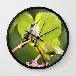 Hummingbird Shower Wall Clock