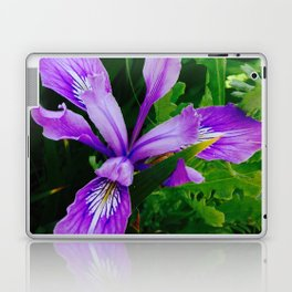 Wild Purple Iris Laptop & iPad Skin