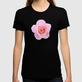 bed of roses: robin's egg blue sky T-shirt