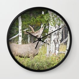 Aspen Nibbler Wall Clock