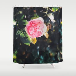 Flower Photography by Amy Burk Shower Curtain