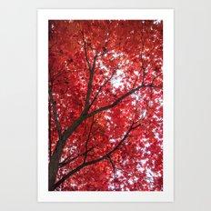 blazing red Art Print