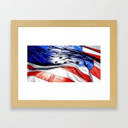Land Of The Free. Framed Art Print