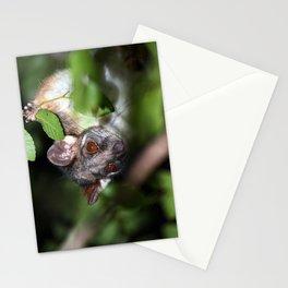 Hello Possum Stationery Cards