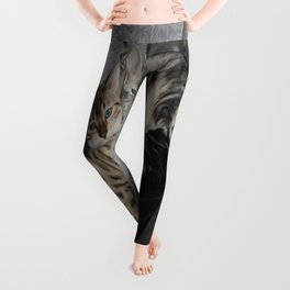Bengal Cat Kitty Pile  Leggings