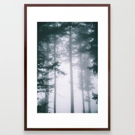 Moody Forest II Framed Art Print