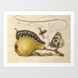 Pear Butterfly Caterpillar Art Print