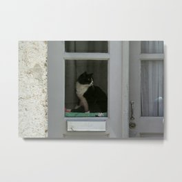 A  Cat in the Window Metal Print