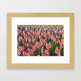 Field Of Flags Framed Art Print