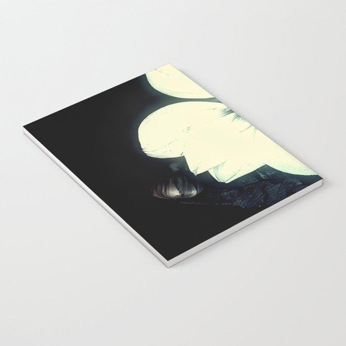 White Dahlia, Christmas Star Notebook