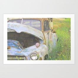 Maynard Art Print