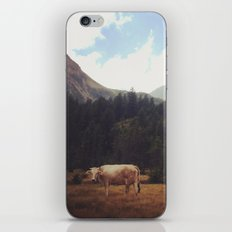 Lonely cow iPhone Skin