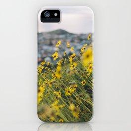 California blooming iPhone Case