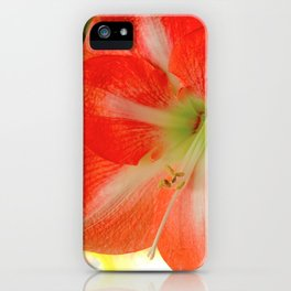Spring has Sprung! iPhone Case