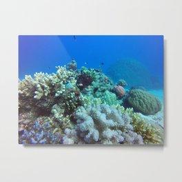 Great Barrier Reef Metal Print