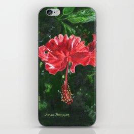 Flamenco by Teresa Thompson iPhone Skin