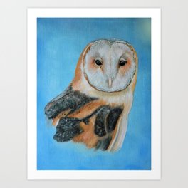 Barn Owl Portrait Art Print