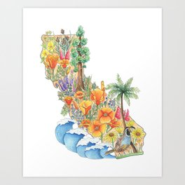 California - Floral Watercolor - State of California - West Coast Art - California Poppies - Ocean Art Print