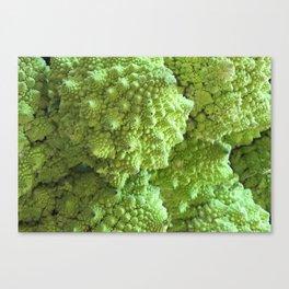 Romanesco Cauliflower - Freeky vegi Canvas Print