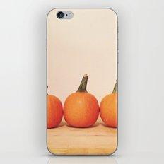 Pumpkin Trio iPhone Skin