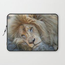 Resting White Lion Laptop Sleeve
