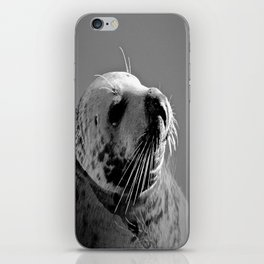 Howth Harbour Seal iPhone Skin