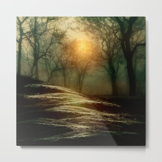 From small beginnings and big endings. by Viviana González Metal Print