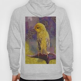 Wild Bird Abstract Colorful Painting Hoody
