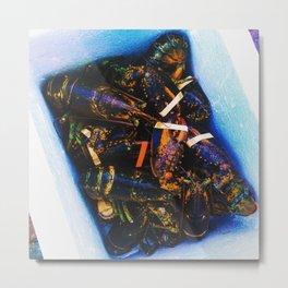 Maine Lobsters Metal Print