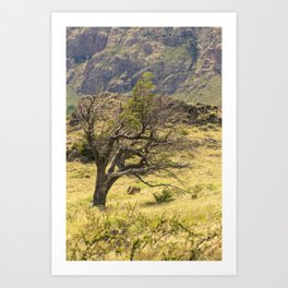 Windy Tree Art Print