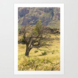 Windy Tree Art Print