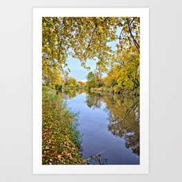 Autumn On Beaver Creek 3 Art Print