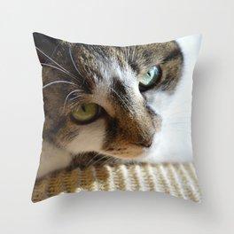 Beautiful Cat Portrait Throw Pillow