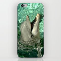 Smiling Dolphin iPhone & iPod Skin