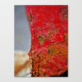 In Rust We Trust Canvas Print