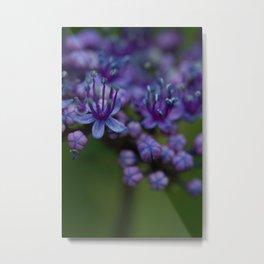Pretty Purple Flower After the Rain Metal Print