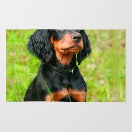 Gordon Setter Attentive Black Dog Puppy Rug