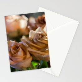 Rose Glow Stationery Cards