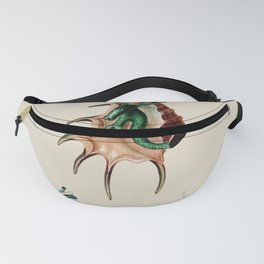 Natural History XIXth Century Expedition Fanny Pack