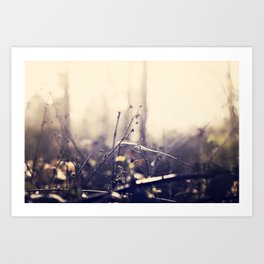 Watercolour  Art Print