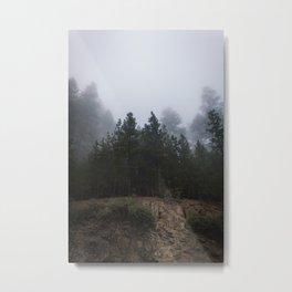 Ghostly Figures - Yosemite National Park, California 2015 Metal Print