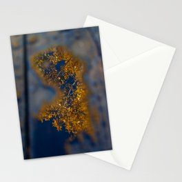 Golden leaves against sapphire sky, reflection in water on deck Stationery Cards