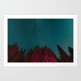 Stars and Pines Art Print