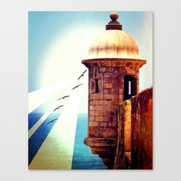 Balance Of Thought Canvas Print