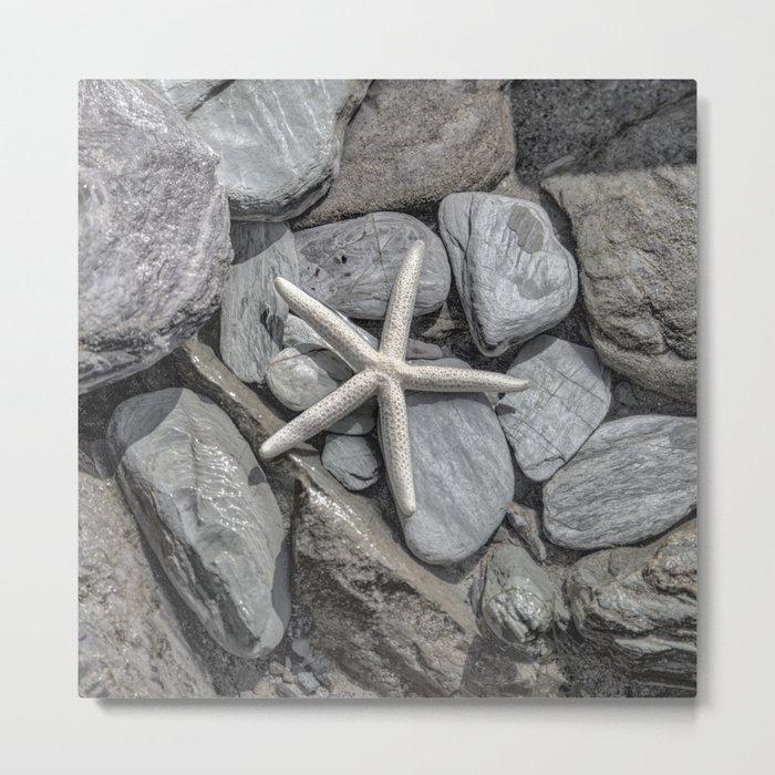 Starfish on Rocks monochrome beige Metal Print