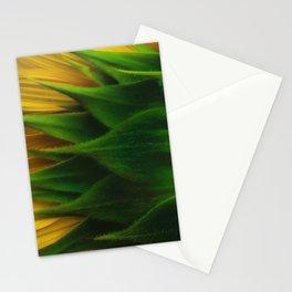 Sunny Back Stationery Cards